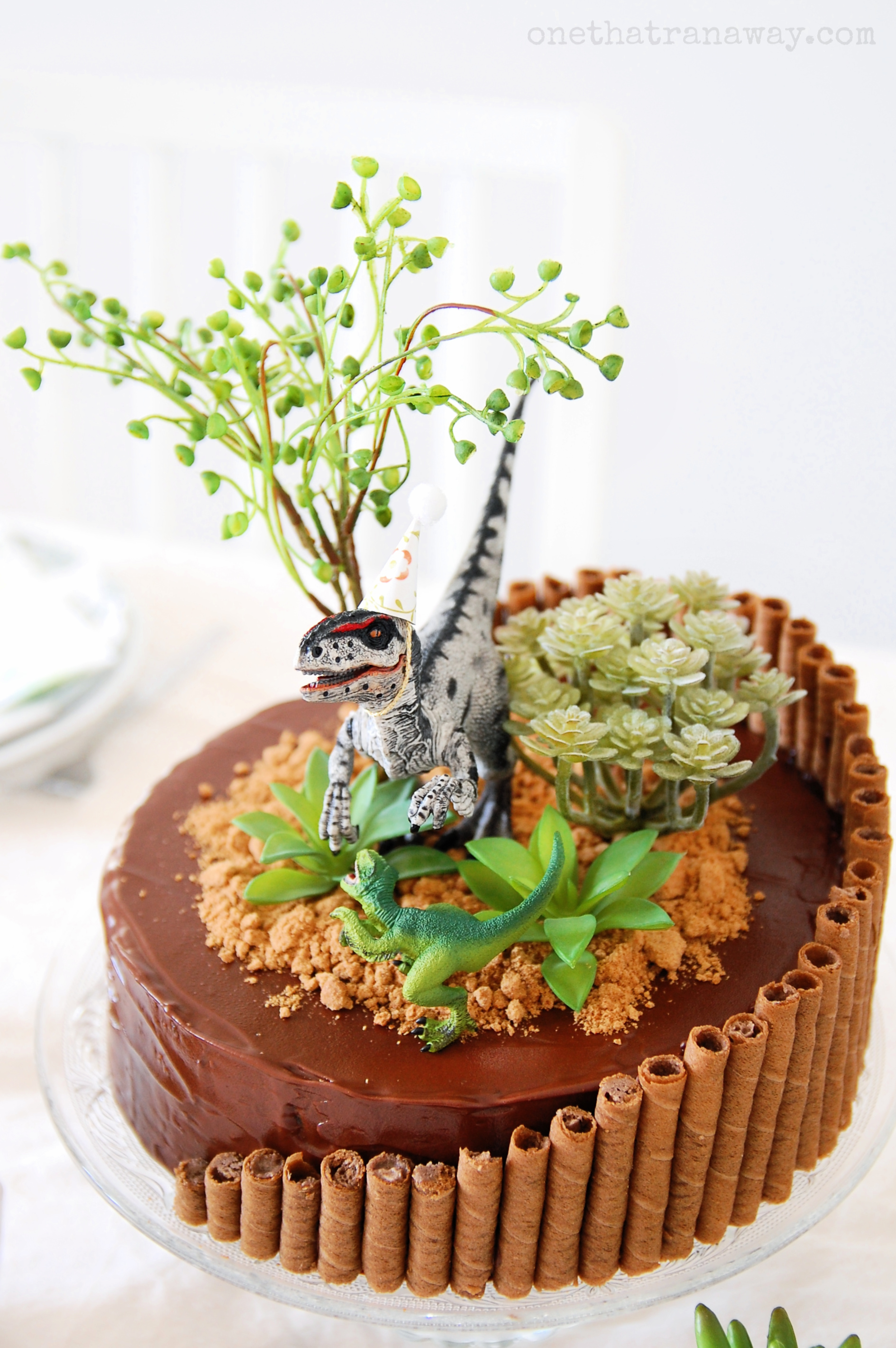 velociraptor birthday party cake with succulents