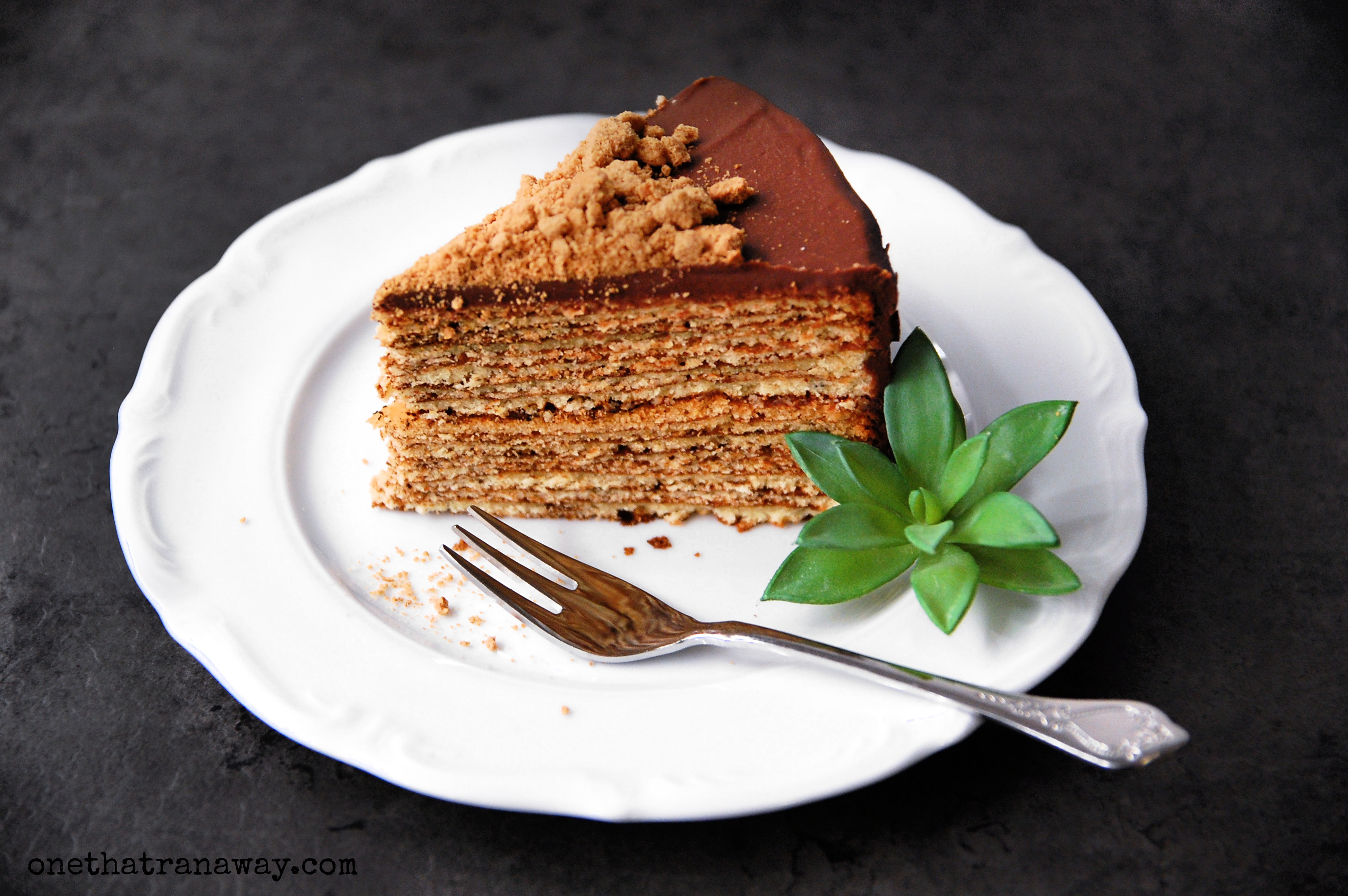 slice of cake with succulent