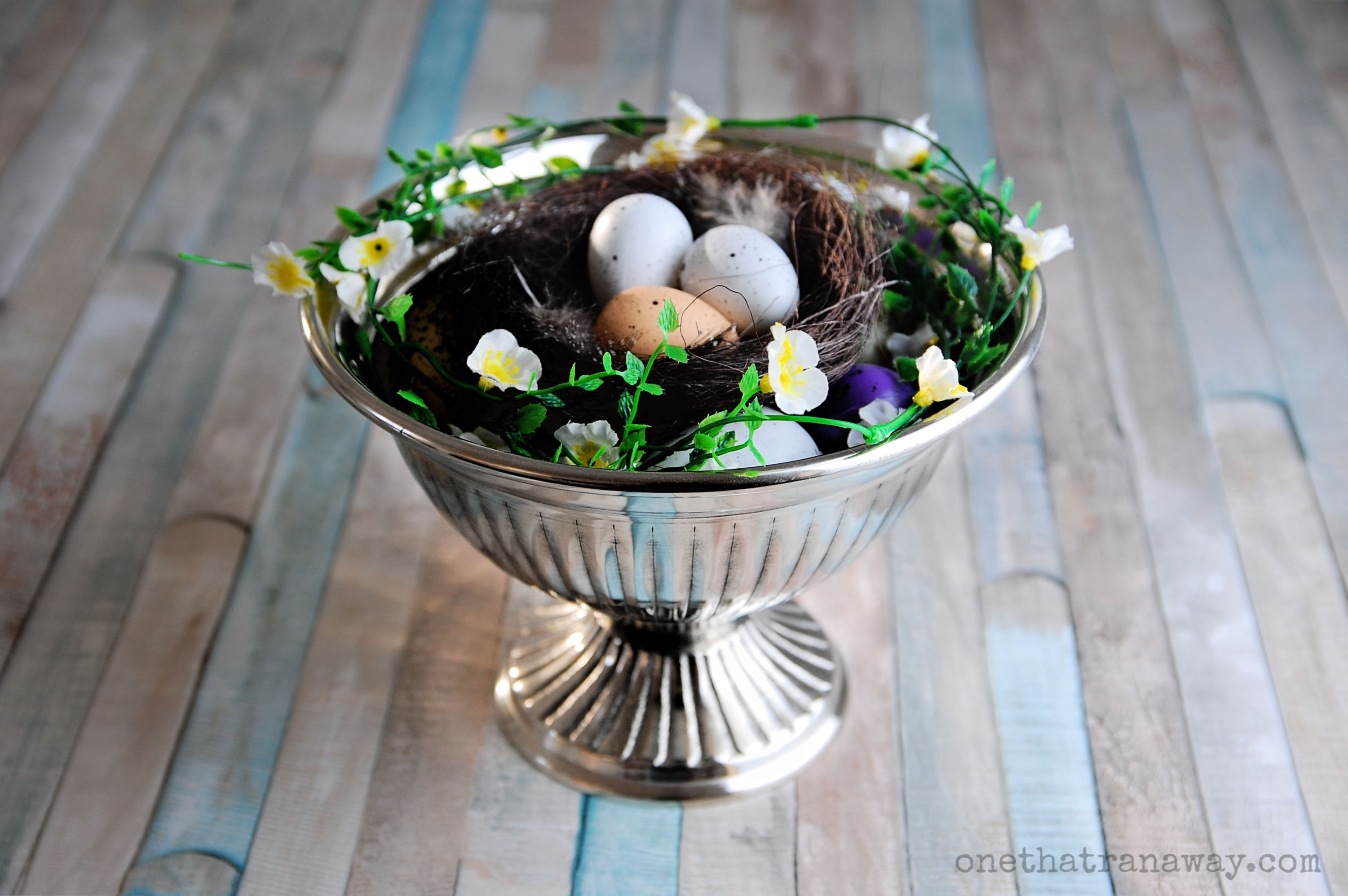 nest filled with eggs in a silver bowl